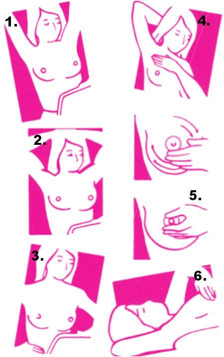 7a6e0-main-phot